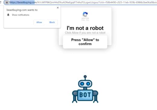 Beastbuying.com ads