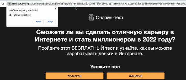 Profitsurvey.org ads